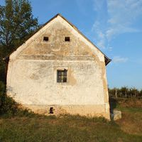 A Szűcs-domb öreg pincéje