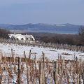 Ragyogó, hófödte Balaton-felvidék