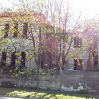 Horrorkórházban, Nagyváradon