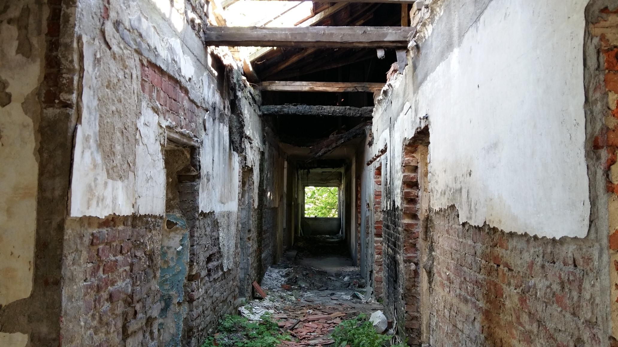 Az emeleten: a beomlott tetőszerkezet egy része, és az ennek nyomán fakadó élet. A szülészeten