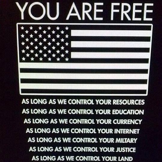 funny-USA-flag-freedom-life-control.jpg