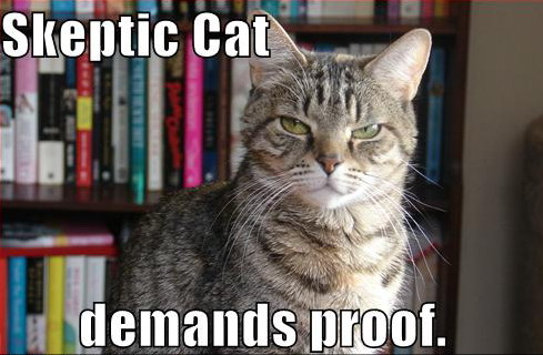skeptic-cat1jj.jpg