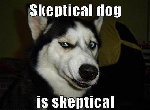 skepticalddd.jpg