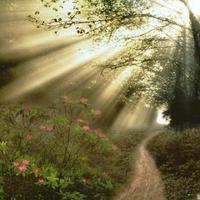 Bihari Klára: A három boszorkány, a tündér meg a pásztorlegény
