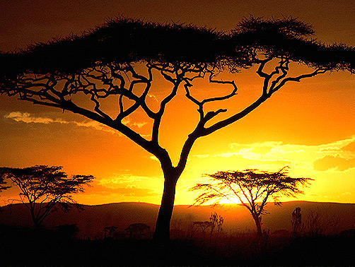 afrikai mesemondas.jpg