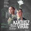 """Belvárosi Színház – """"Na végre!!"""" – Kaktuszvirág – sajtóbemutató – 2019.12.02."""