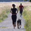 Futás nyáron, hőségben - tippek