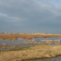 Fotók a kardoskúti Fehér tóról 15 nap különbséggel