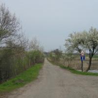 Biciklivel a 47-esen Szeged és Orosháza között