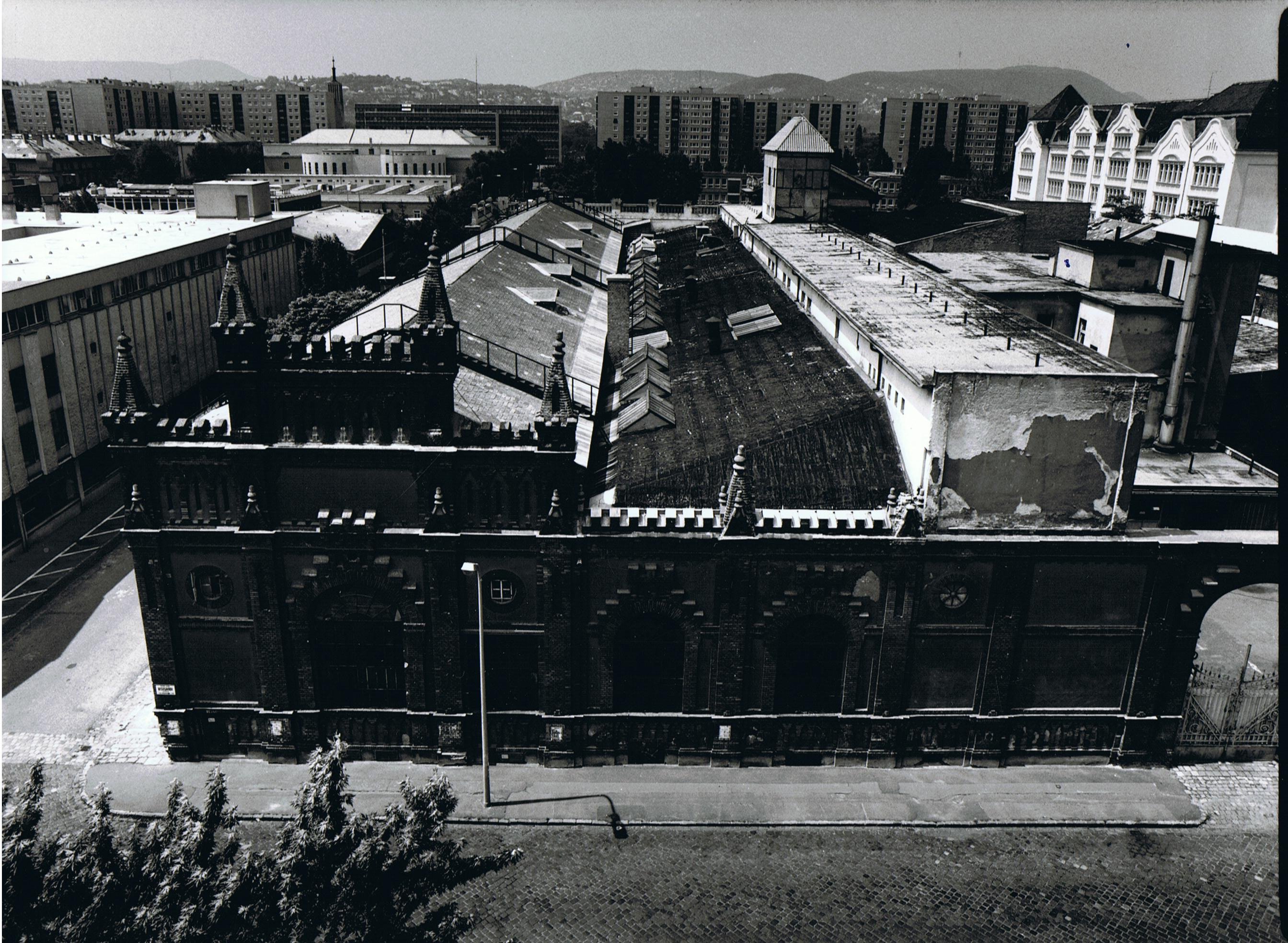 91.1960.1.jpg