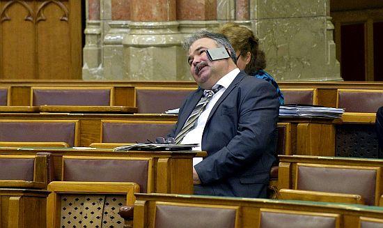 nagy_istvan_parlament.jpg