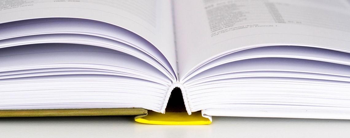 Egyperces pillanatok - A Könyvhét margójára