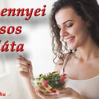4+1 mennyei húsos saláta