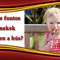 Mennyire fontos a gyermekek étrendjében a hús?
