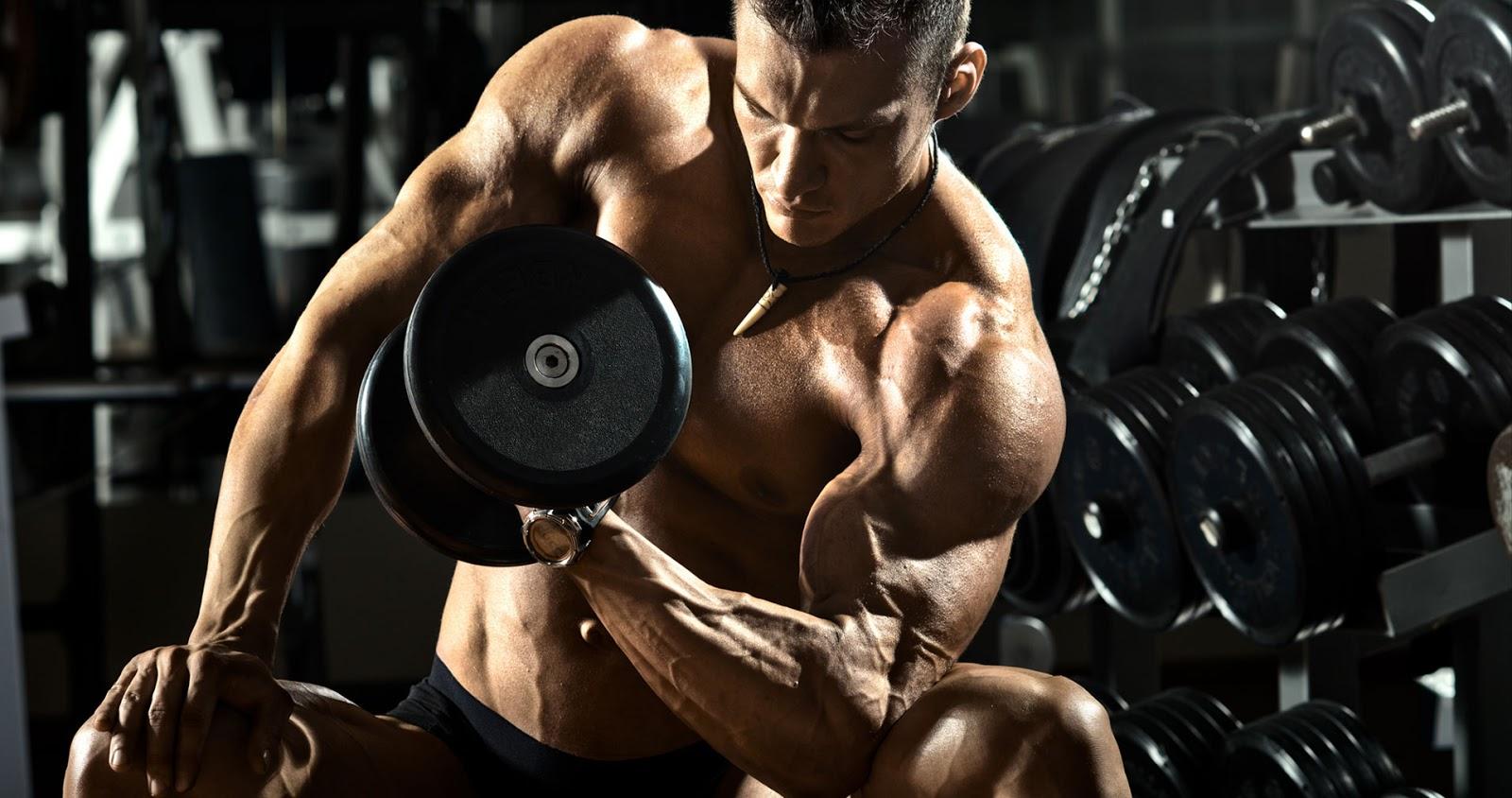 bodybuilding-contests-training.jpg