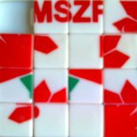 Mit várunk a Magyar Szocialista Párt mai kongresszusától?
