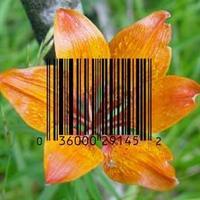 DNS vonalkódot minden növénynek