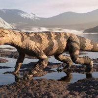 A krokodilok aranykora