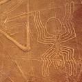 Saját pusztulásukat idézték elő a Nazca-vonalak alkotói