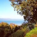 5 ok, amiért el kell menned ősszel a Balatonra