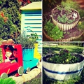 Három mesébe illő kerti fűszerkert
