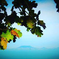 Ez is Panoráma sétány #fonyód #ősz #balaton_ősszel #badacsony #balatoni_fotók