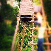 Gyerekszáj: balatoni gyerek magaslest lát :-)