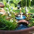 Tündérek a kertben - DIY tippek