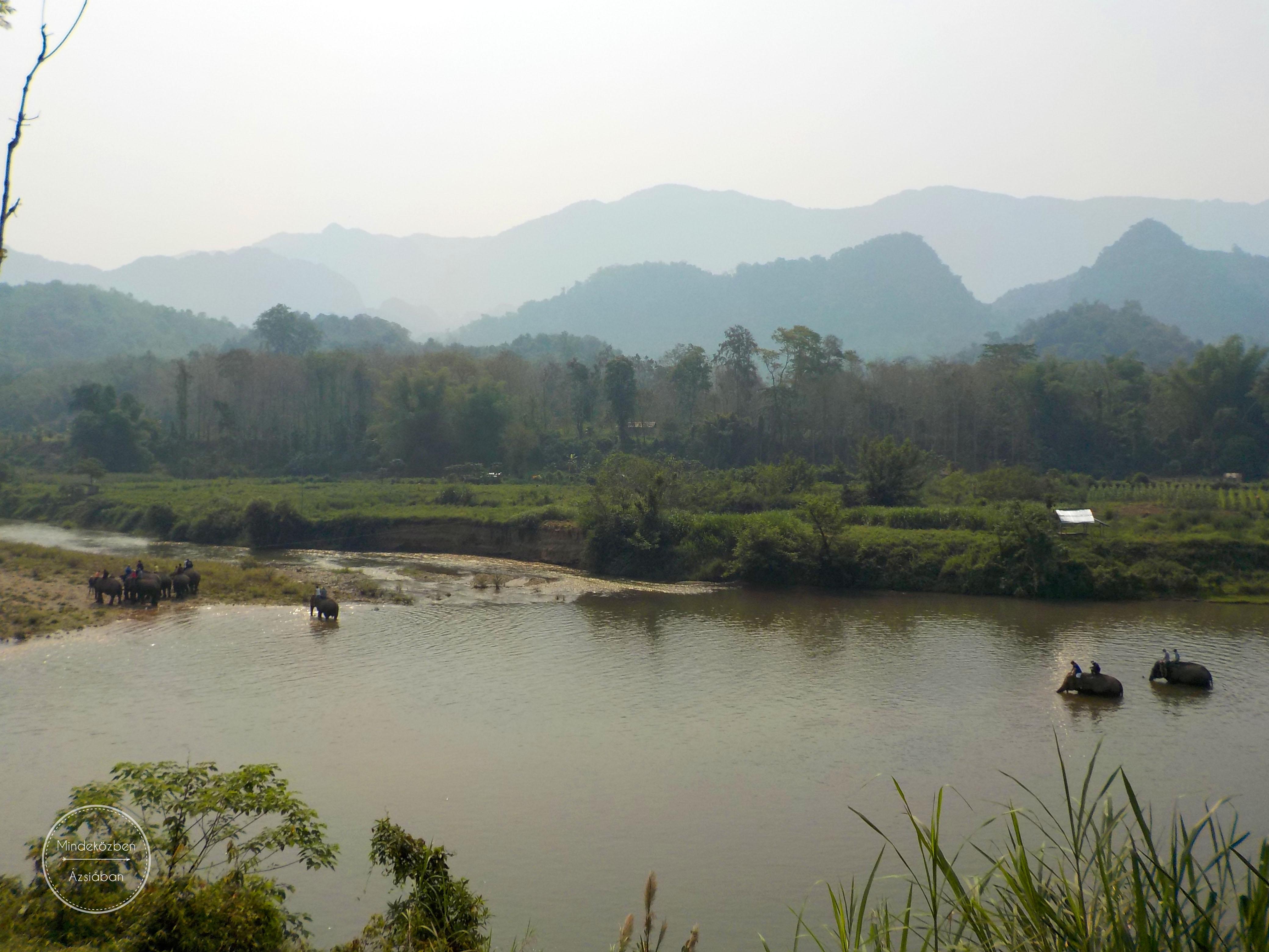 Bár Laosz az egymillió elefánt országa néven vált ismerté 9ea21523a0