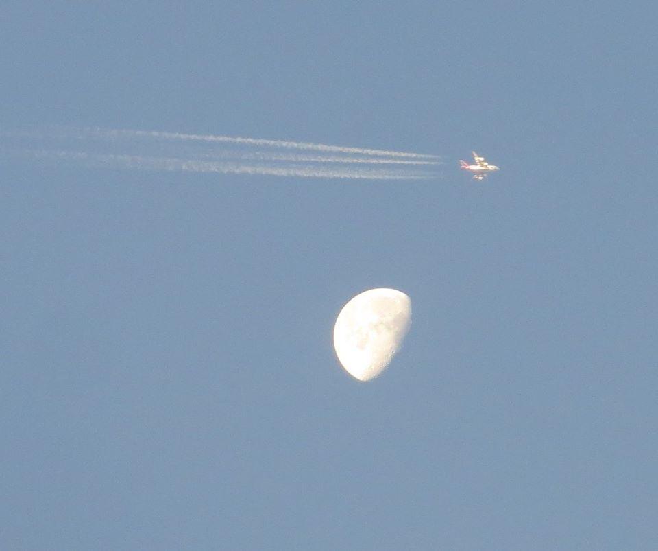 hold és repülő mforgach andrás.jpg