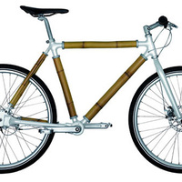 Bamboo bringa