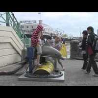 Banksy olajfoltos hálóból menekülni vágyó delfinen lovagoltatja a gyerekeket