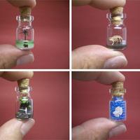 Mini tájképek mini palackokban