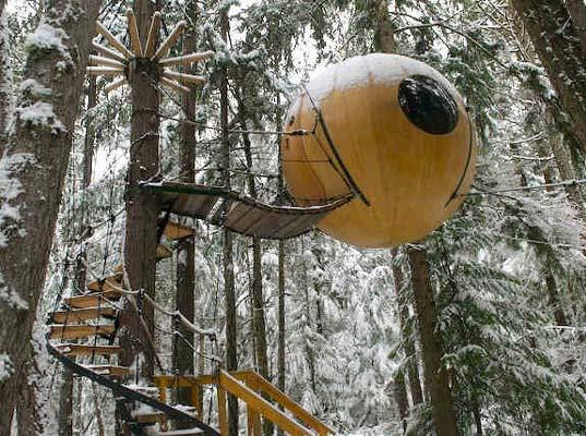 Eco Treehouse - Faház a fákon