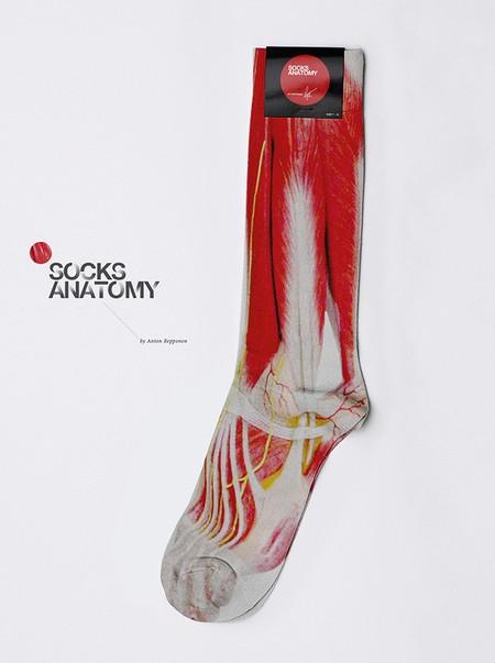 A zokni anatómiája
