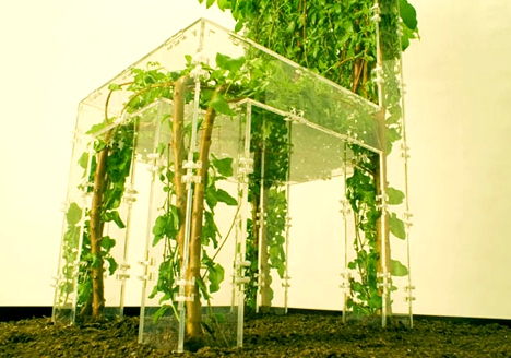 Ültetett kerti bútor