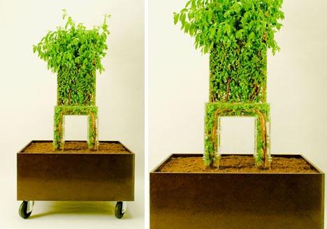DIY Natural Wood Chair