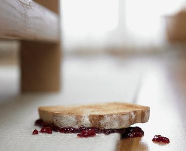 Food-dropped-on-floor.jpg