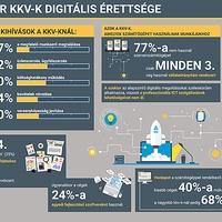 Infógrafika - a magyar KKV-k digitális érettsége