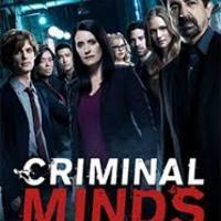 Gyilkos elmék (13. évad)