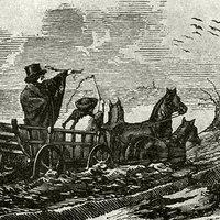 A természet legyőzése vagy ökológiai katasztrófa? Ember és környezete a 19. századi Magyarországon