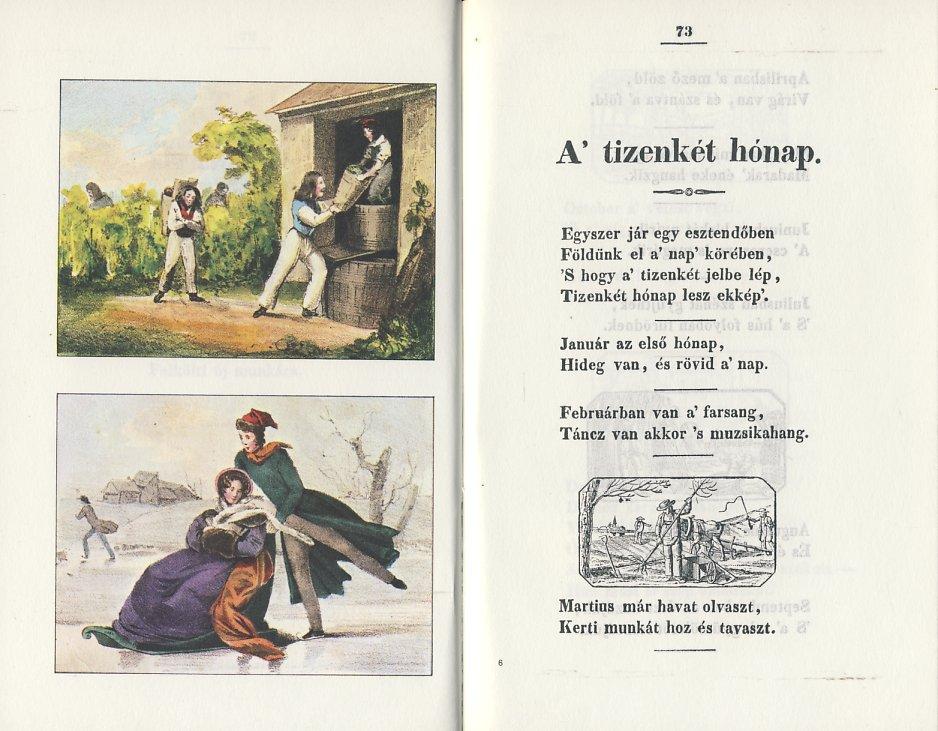Flóri könyve2.jpg