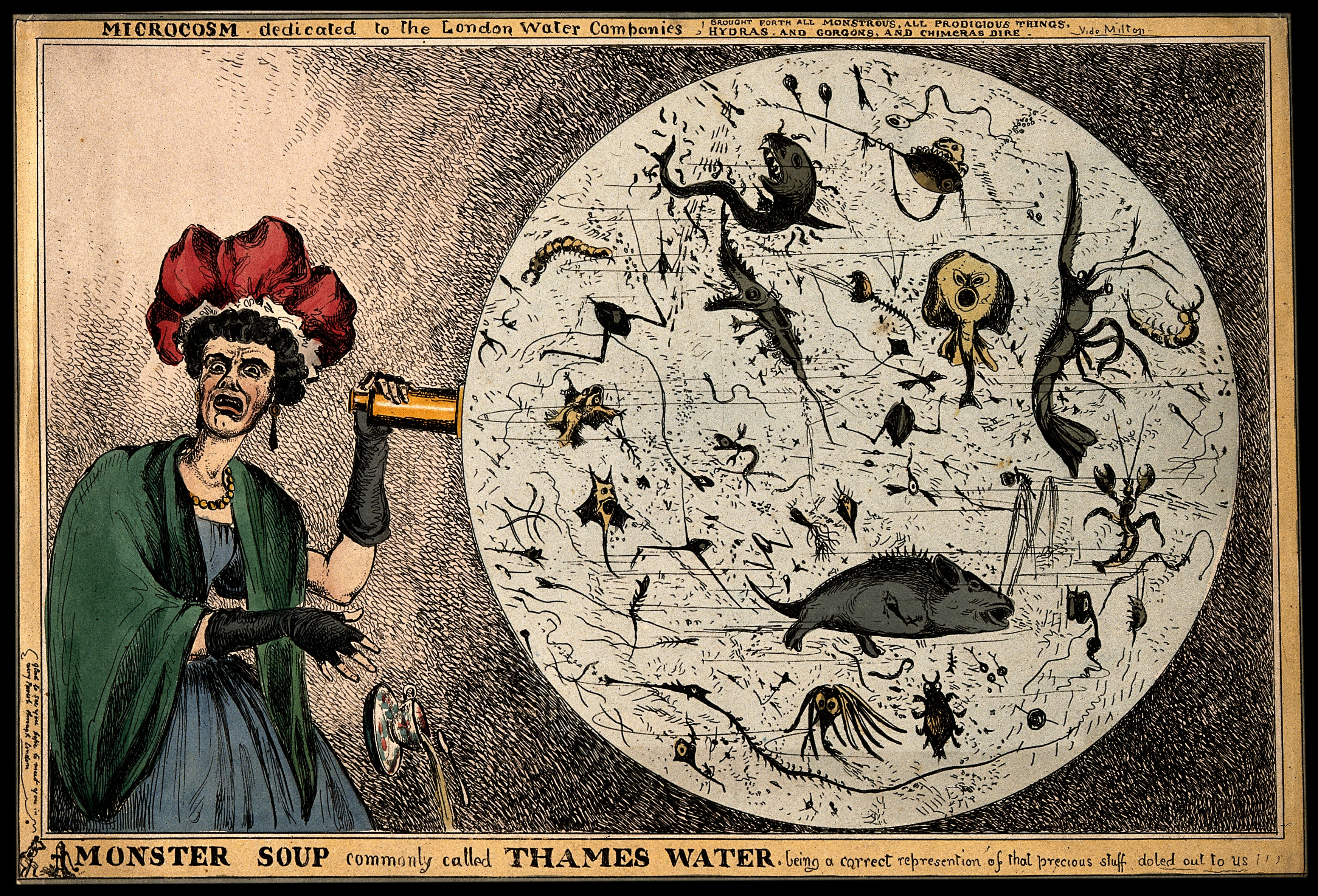 monster_soup_commonly_called_thames_water_wellcome_v0011218.jpg