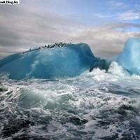 Buli a jéghegyen