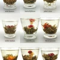 Növény teák