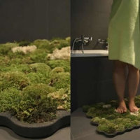 Fürdőszoba dizájn - Talpalatnyi természet