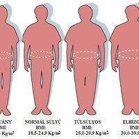 Hasi elhízás egészségügyi kockázatai (kockás has vagy kockázatos pocak)