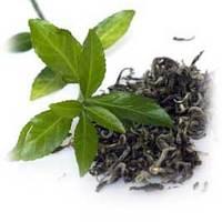 A zöld tea