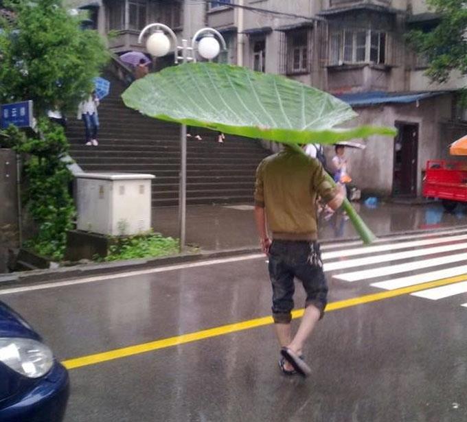 funny-umbrella.jpg