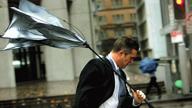umbrella2_650x366.jpg